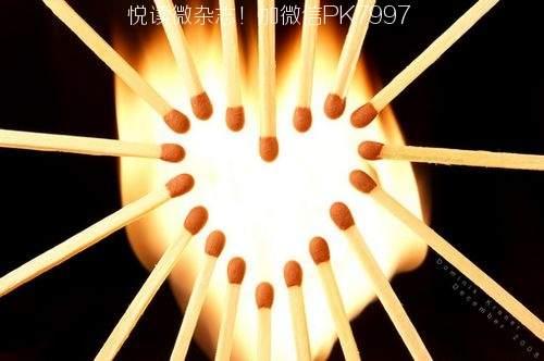 温暖的爱心图片 (3)