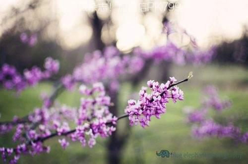 人生需要沉淀,宁静才能致远 (3)