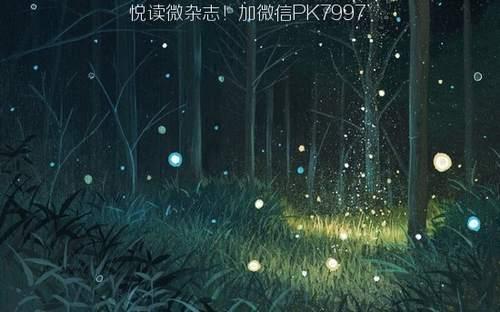 动漫壁纸:萤火虫场景图片 (6)