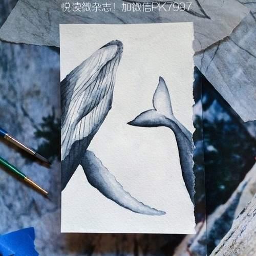 冷色调的深海海洋与鲸鱼的治愈系水彩画图片